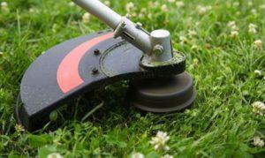 Trimming & mowing